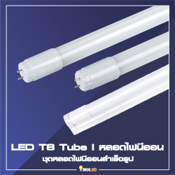 Category 2. LED T8 Tube