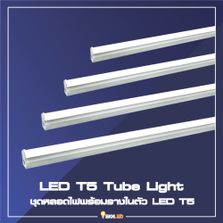 Category 3. LED T5 Tube