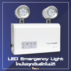 Category LED Emergency Light