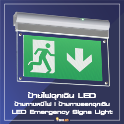 Category LED Emergency Signs Light