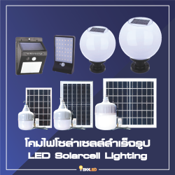 Category LED SolarCell Lighting