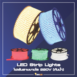 Category LED Strip Light