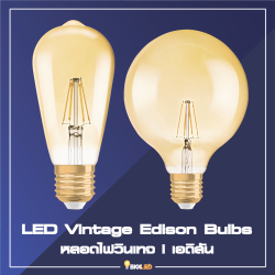 Category LED Vintage Edison Bulbs